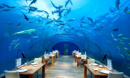1_undersea_restaurant
